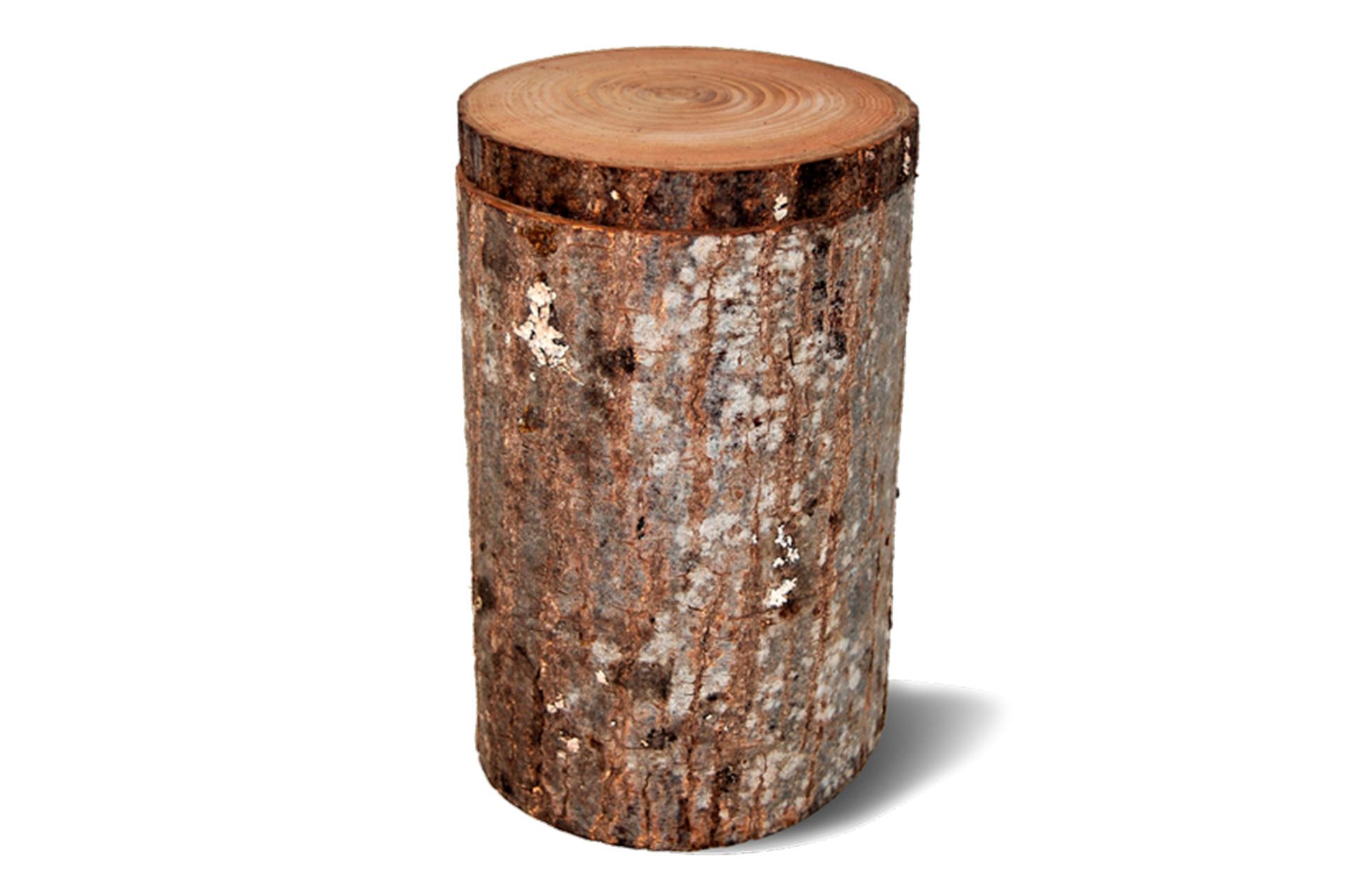 Urna tronco